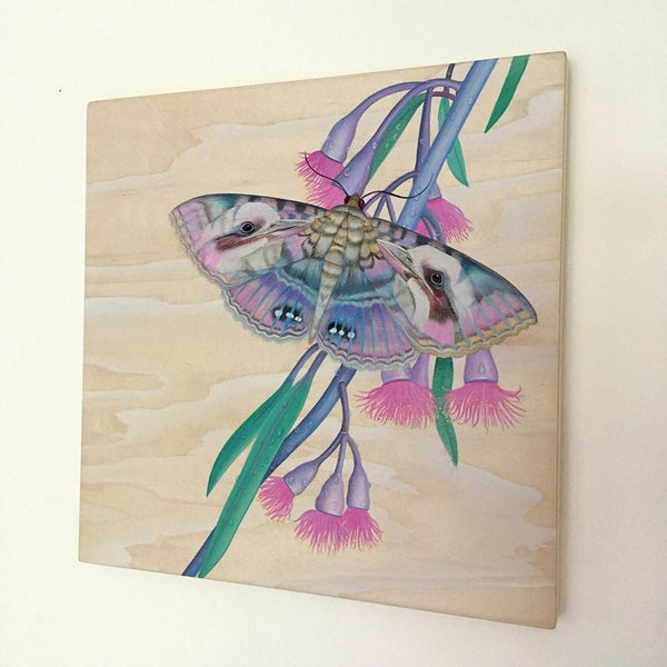"Tiffany Bozic - ""Kookaburra Moth"" - acrylic on mapel wood - 25.4 x 25.4cm (10""x10"")"