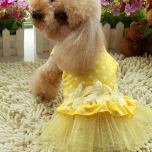 Flower Lace Tutu Dress