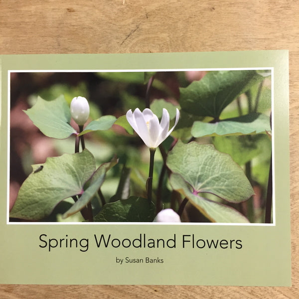Spring Woodland Flowers Book