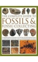 The complete guide to: Fossils & fossil-collecting