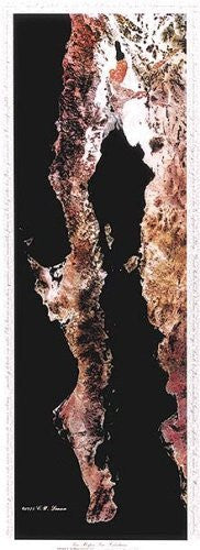 Baja Peninsula Infared From Space Satellite Map Gloss Laminated