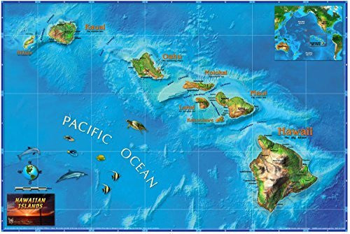 "us topo - Decorative HAWAII Physical Wall Map *Laminated* LARGE 48""x74"" - Wide World Maps & MORE! - Book - Wide World Maps & MORE! - Wide World Maps & MORE!"