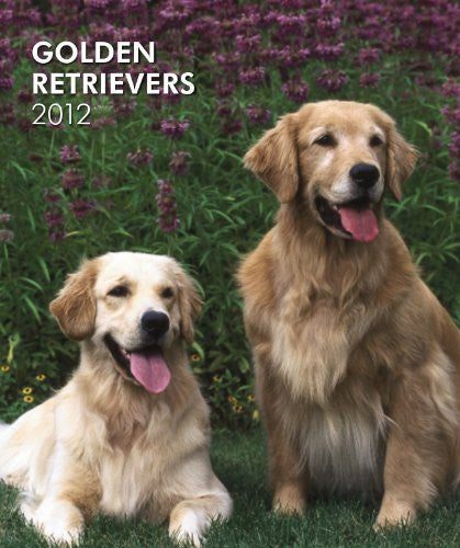 Golden Retrievers 2012 Weekly Engagement Calendar