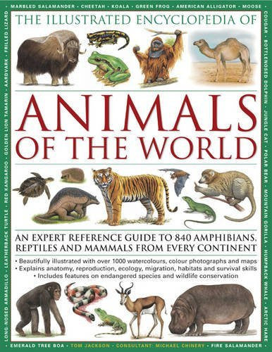 us topo - The Illustrated Encyclopedia of Animals of the World: An expert reference guide to 840 amphibians, reptiles and mammals from every continent - Wide World Maps & MORE! - Book - Wide World Maps & MORE! - Wide World Maps & MORE!