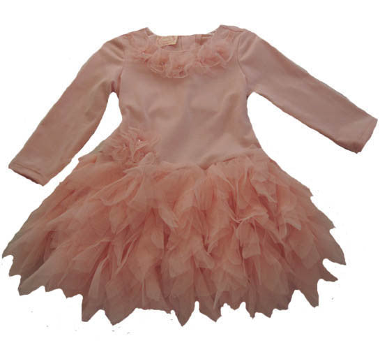 Baby Biscotti Netting Skirt Birthday Girl Dress