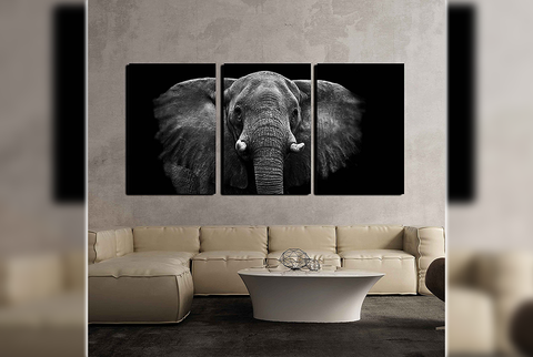 Elephant Split Canvas