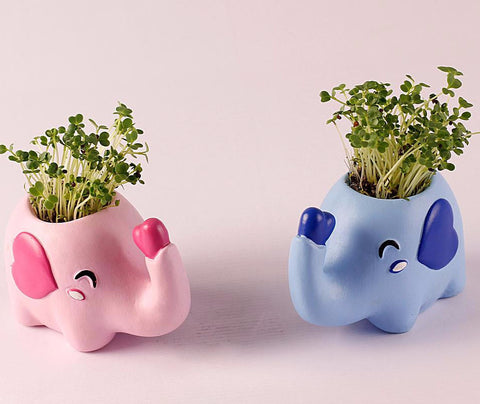 Couple Elephant Flower Pot