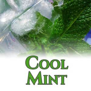 Cool Mint Flavor at Lakeshore Vapors