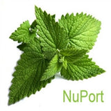 Nuport Flavor at Lakeshore Vapors