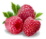 Raspberry Flavor at Lakeshore Vapors