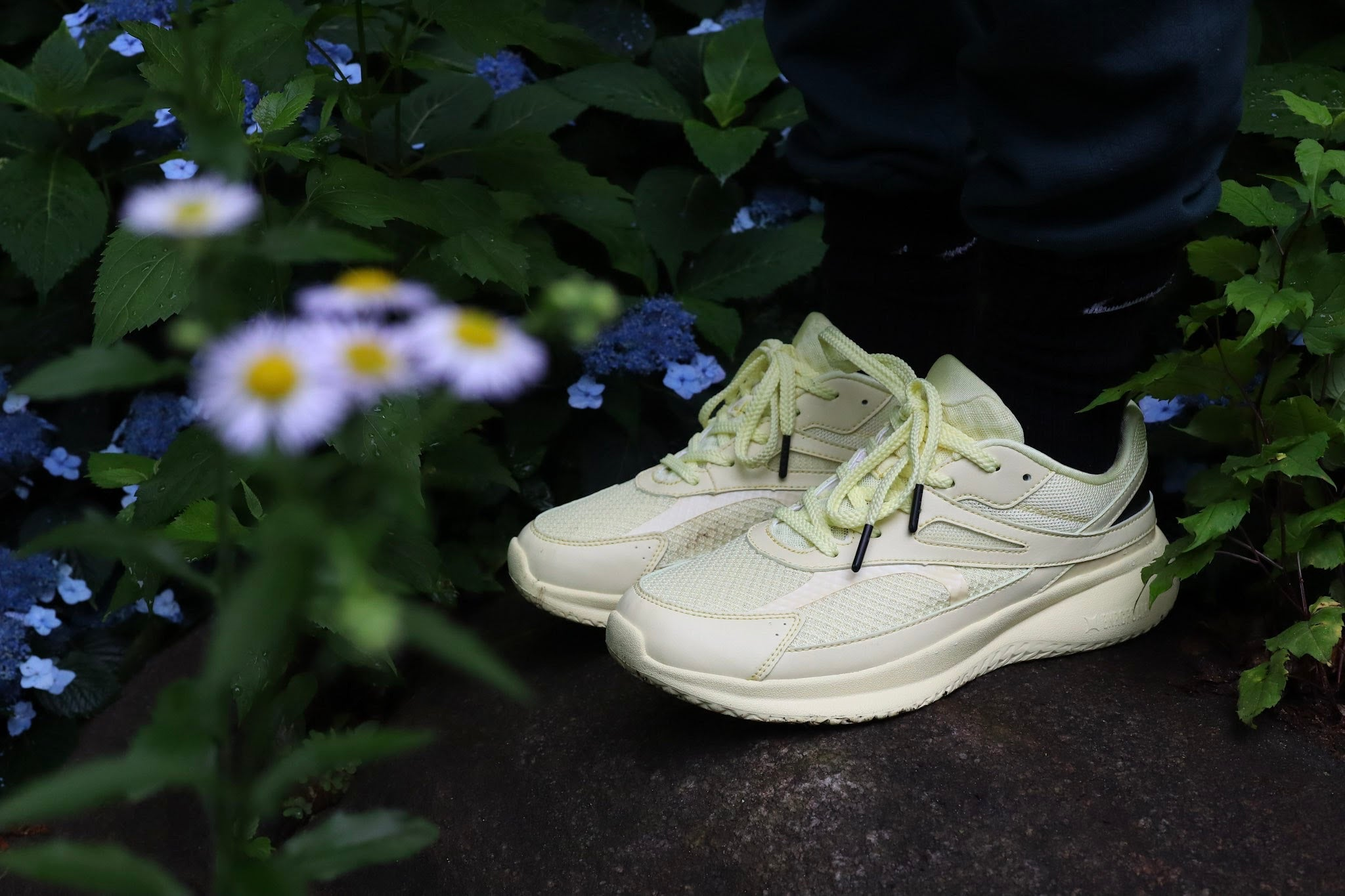 NinetyNine Products Point | Chalk