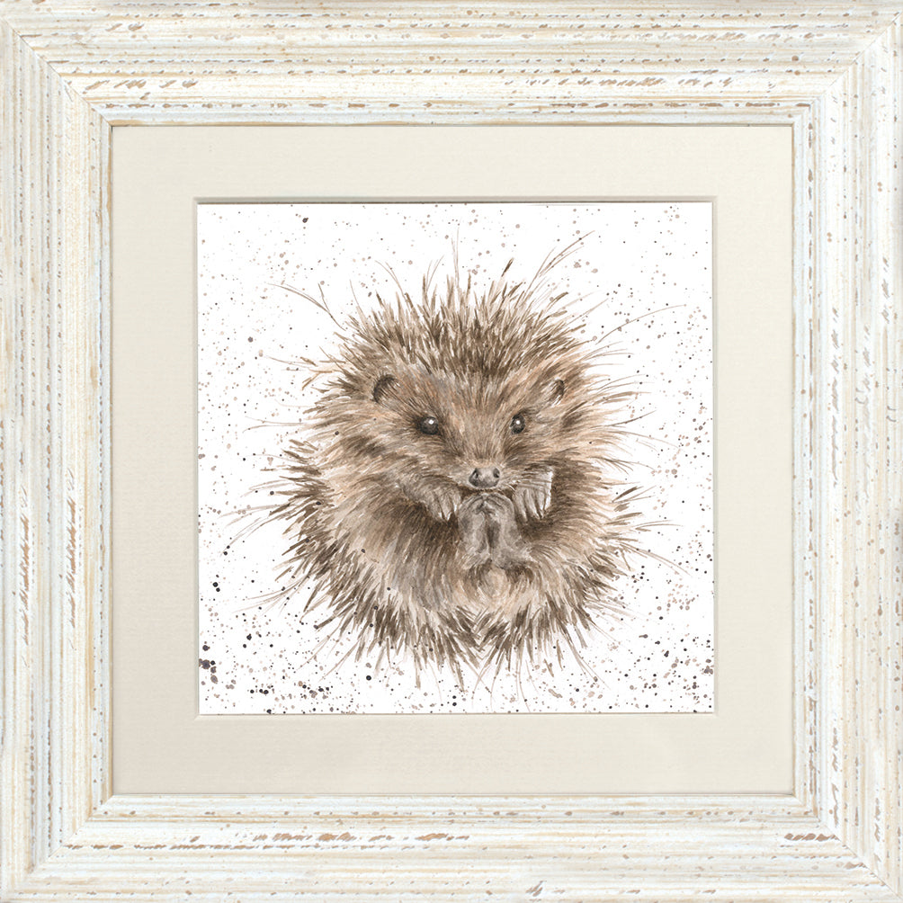Awakening Hedgehog Framed Card