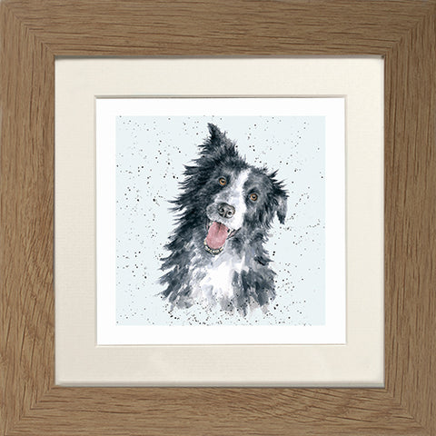 Wrendale Border Collie Picture Jess Oak Framed Card