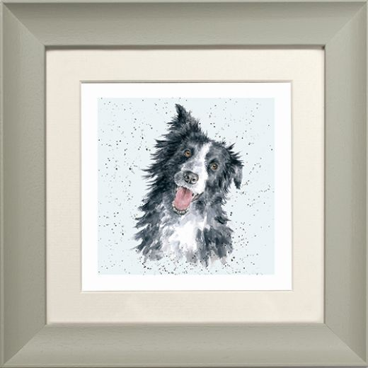 Wrendale Border Collie Picture Jess Sage Framed Card