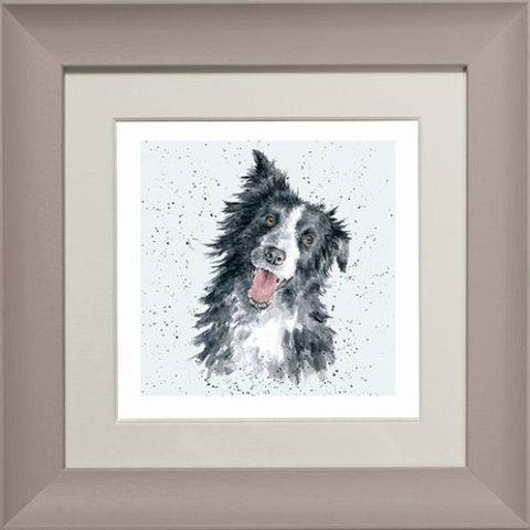 Wrendale Border Collie Picture Jess Taupe Framed Card