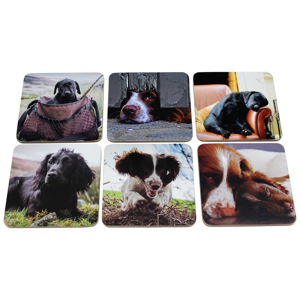 Working Dogs Placemats Set of Six