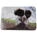 Spaniel Dogs Placemats Set of Six