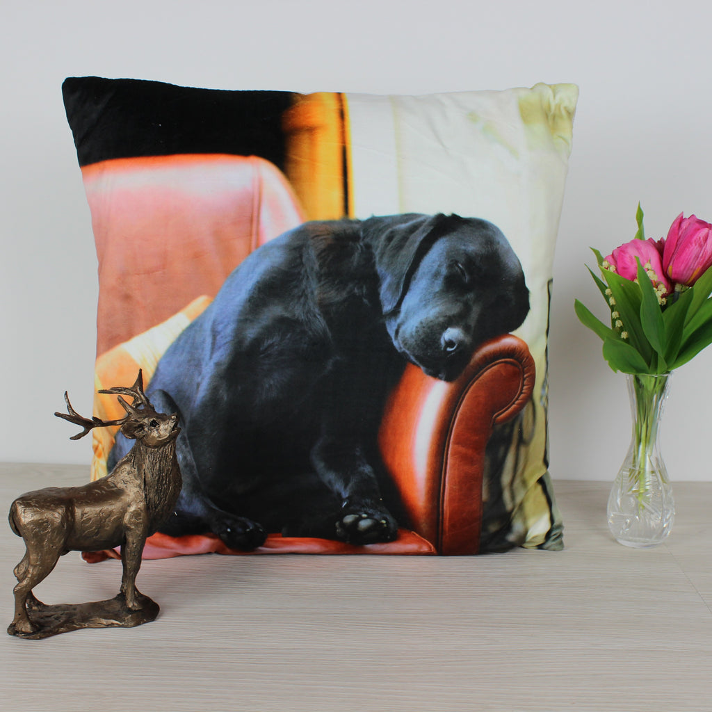 Sleeping Labrador Cushion
