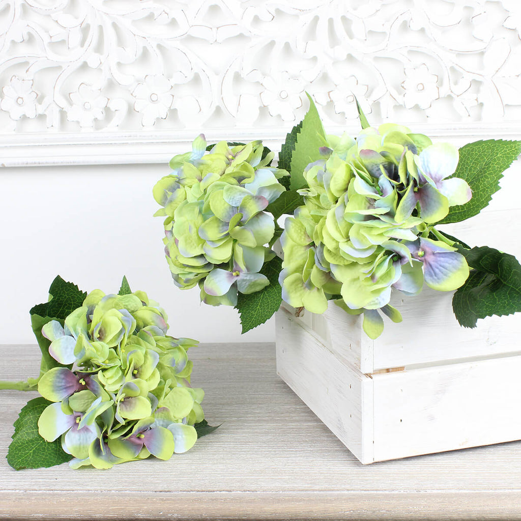 Large Single Green Hydrangea