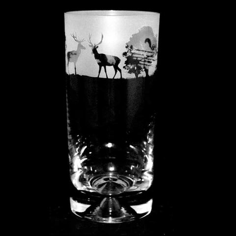 Woodland Scene Highball Tumbler