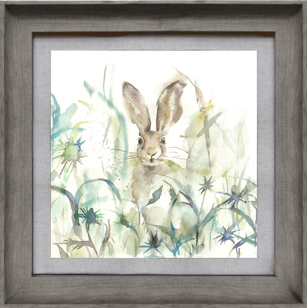 Jack Rabbit Hare Picture Voyage Maison Art