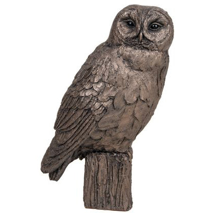 Tawny Owl Frith Bronze Sculpture