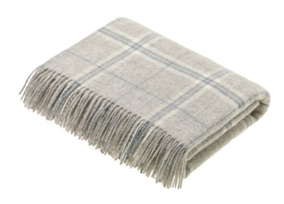Bronte by Moon Windowpane Transitional Throw in Slate