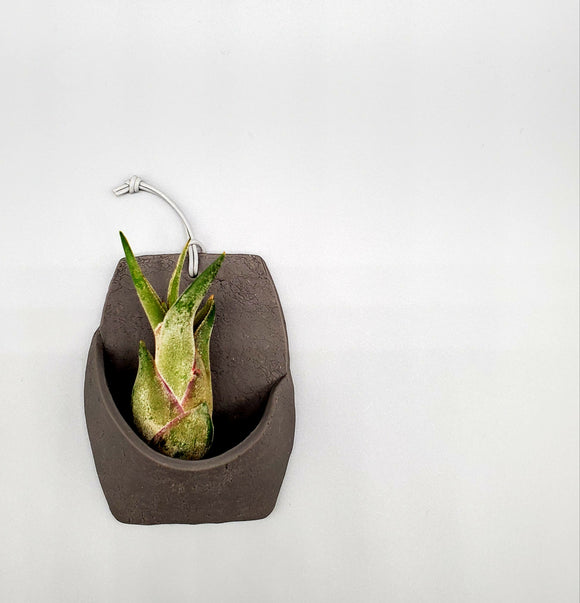 Concrete Air Plant Vessel No. 1
