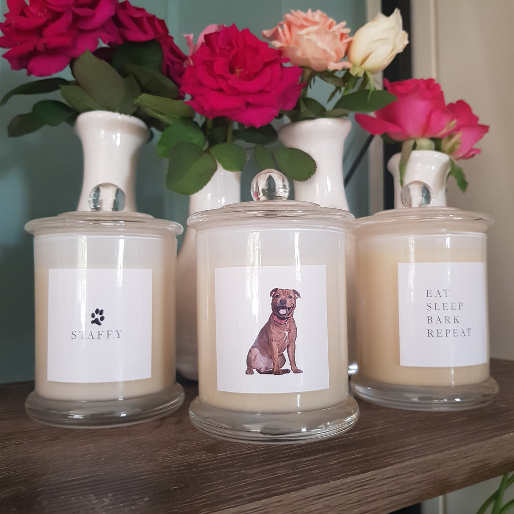Eat Sleep Bark Repeat - Set of 3 Standard Candles - Staffy