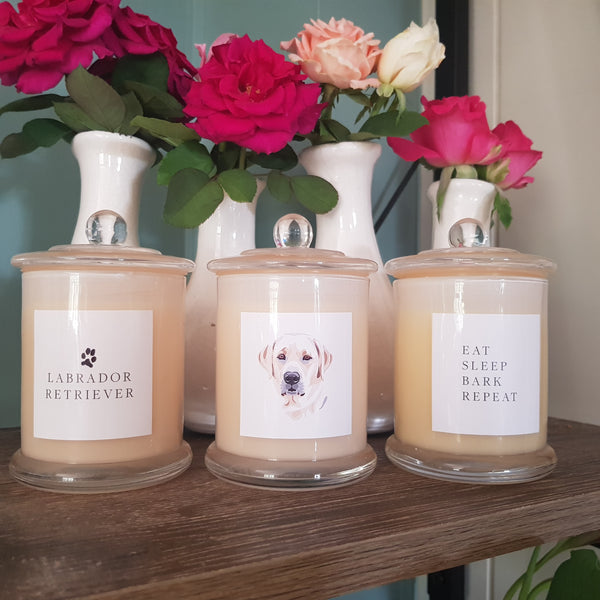 Eat Sleep Bark Repeat - Set of 3 Standard Candles - Labrador
