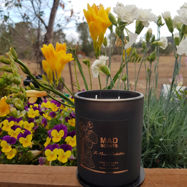 Kakadu Plum - Modish Matte Black Candle