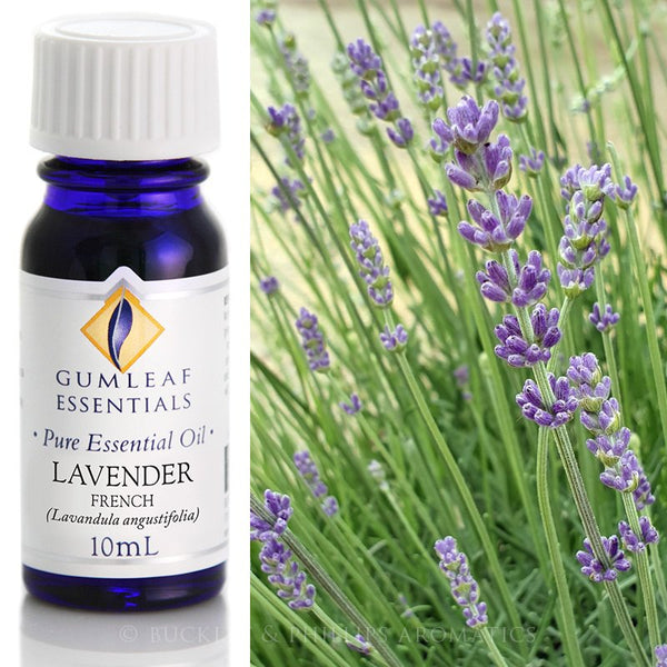 Lavender (French) - 10ml Essential Oil