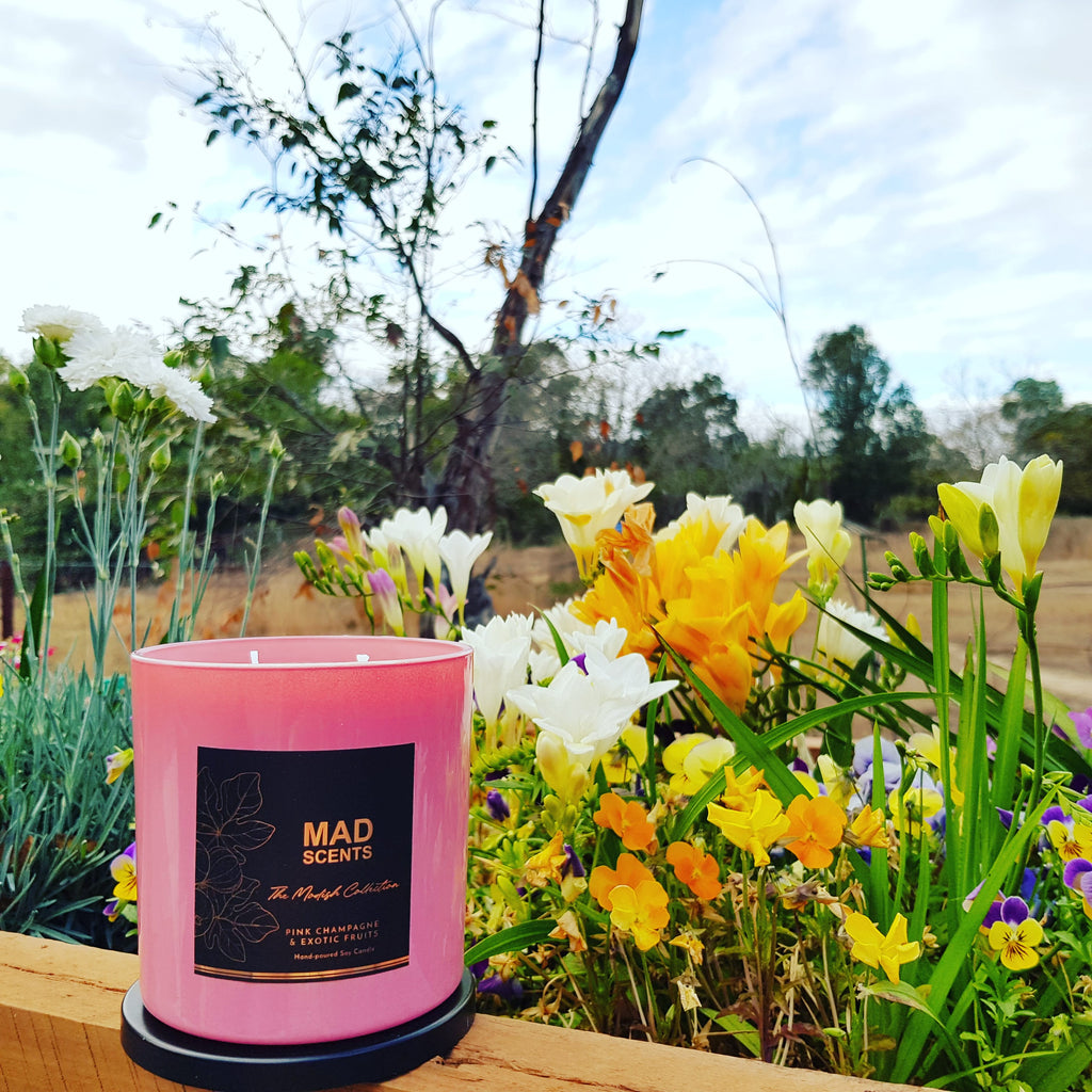 Strawberries & Cream - Modish Large Pink Candle