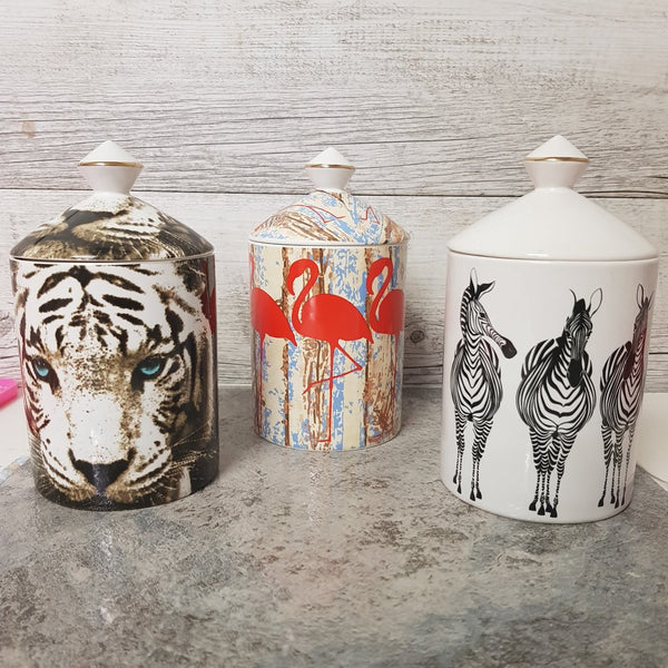 PREORDER: White Tiger Wood Wick Canister Candle