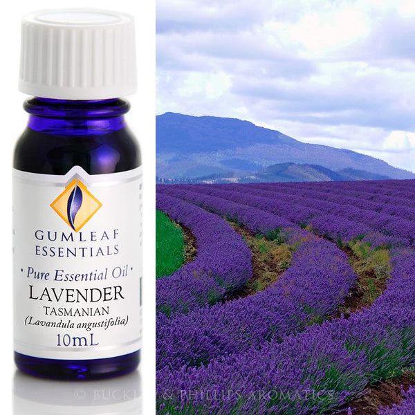 Lavender (Tasmanian) - 10ml Essential Oil