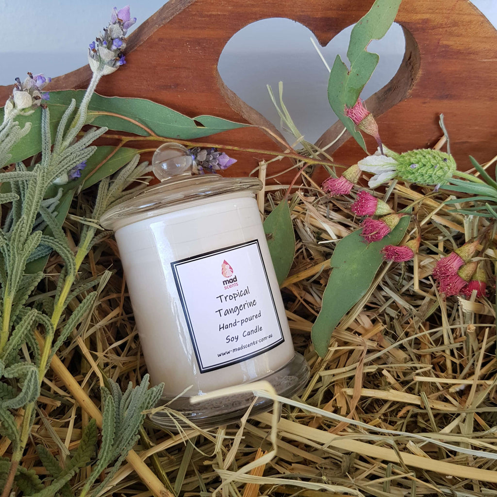 Tropical Tangerine White Petite Soy Candle