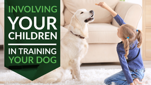 How to Involve Your Children in the Training of Your Dog