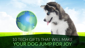 10 Tech Gifts That Will Make Your Dog Jump for Joy