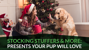 Stocking Stuffers & More: Presents Your Pup Will Love