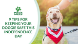 Nine Tips For Keeping Your Doggie Safe This Independence Day