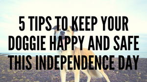 5 Tips To Keep Your Doggie Happy and Safe This Independence Day