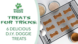 Treats for Tricks: 6 Delicious D.I.Y. Doggie Treats