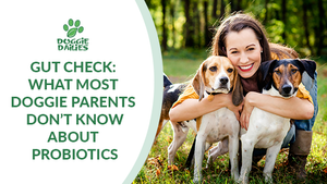 Gut Check: What Most Doggie Parents Don't Know About Probiotics