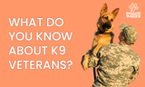 National K9 Veterans Day: 3 Heroic Retired Military Working Dogs