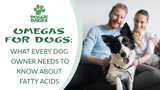 Omegas For Dogs: What Every Dog Owner Need to Know About Fatty Acids