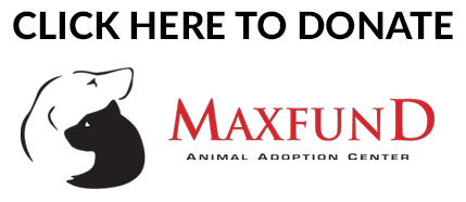 MaxFund Animal Adoption Center Donations