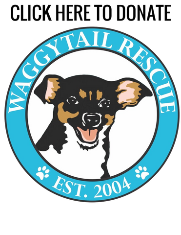 Waggytail Rescue Donation