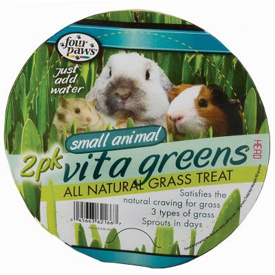 Vita Greens Replacement Seeds — 2 packs / Graines de remplacement Vita Greens — 2 paquets