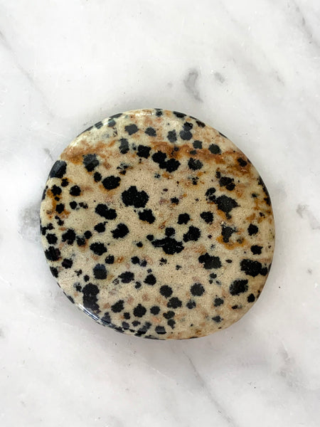Palm Stone Crystal (Dalmation Jasper)