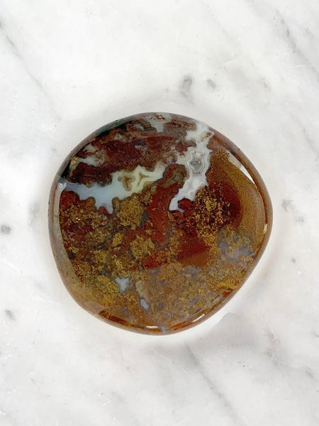 Palm Stone Crystal (Petrified Wood Fossil)